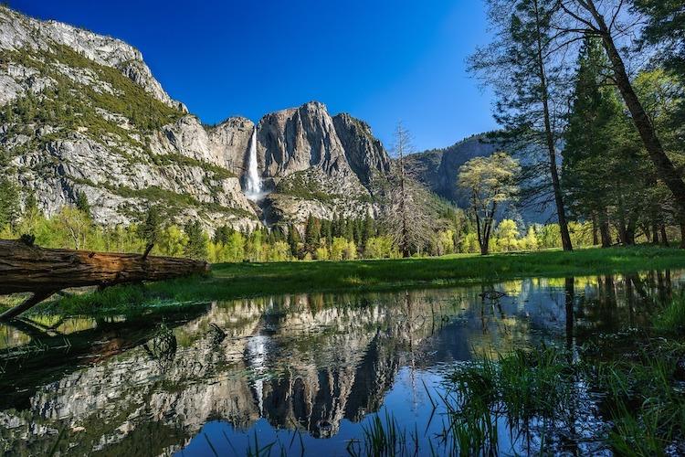 洛杉矶 - 南加八大主题项目任选一 - 旧金山 - 优胜美地国家公园