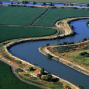 Image - The Bay Delta: A Grand Bargain?