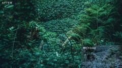 Landscape Lightroom Presets Volume 1