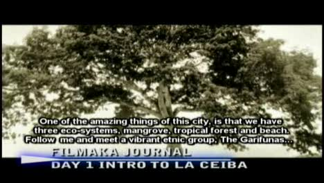 Intro To La Ceiba-Jardiel