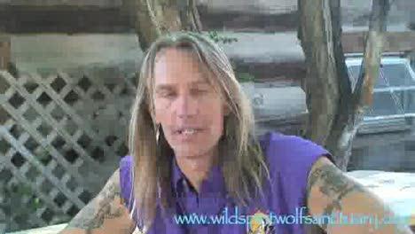 Wild Spirit Wolf San-Lynsey