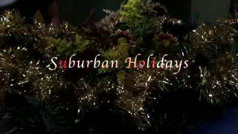 Suburban Holidays-Randy