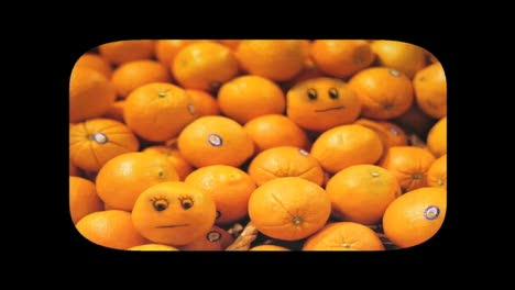 Oranges-Emily