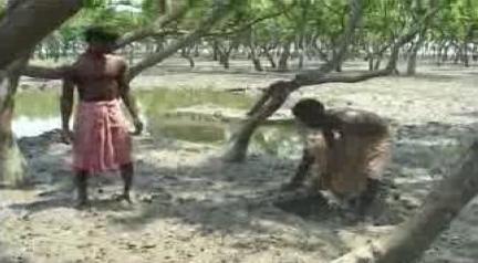Man Versus Nature-Abhijit