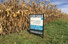 2020 Farmland Market Review
