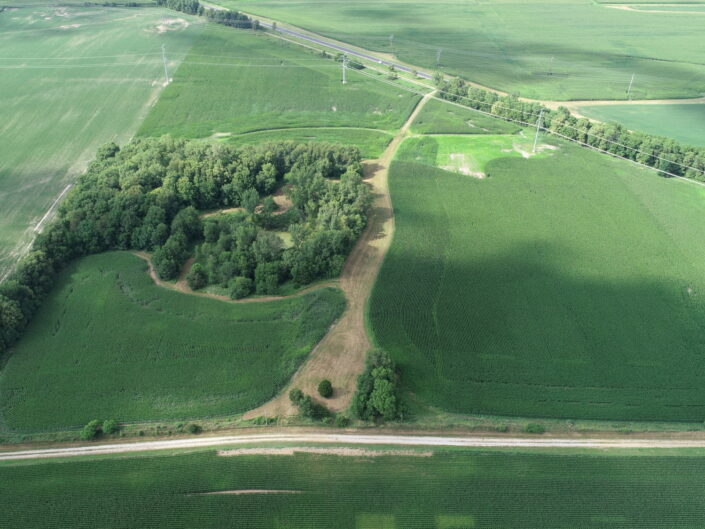 Proctor Farm