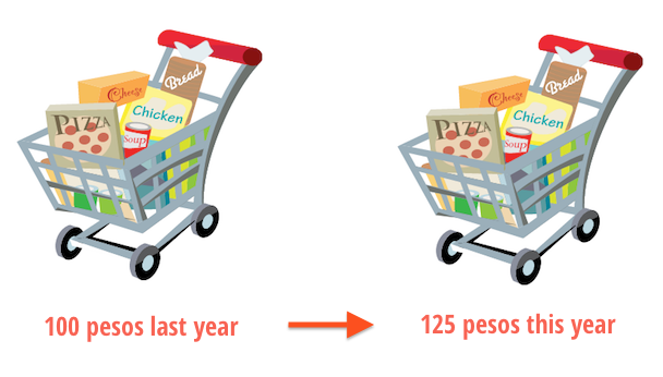 Inflation in Grocery Shopping Carts