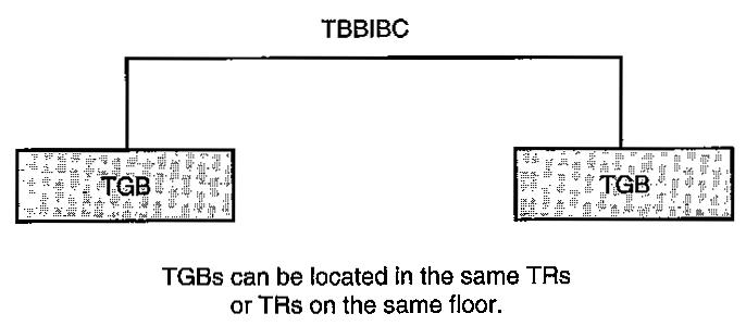 TBBIBC-Example