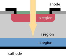PIN photodiode Structure