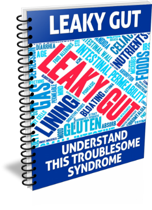 LeakyGut 3D Binder 741x1024 - Leaky Gut PLR Articles | Leaky Gut Report With Private Label Rights