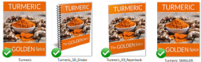 TurmEcovers 1 - Turmeric PLR Articles | Turmeric Report With PLR