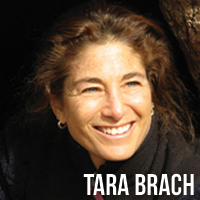 Tara Brach Self-Help online program