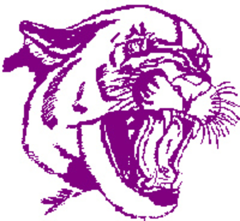 Bloomington South High School mascot