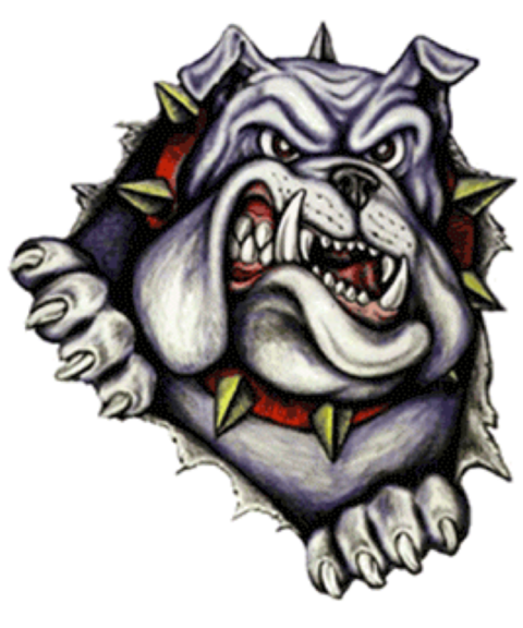 Ashville High School mascot