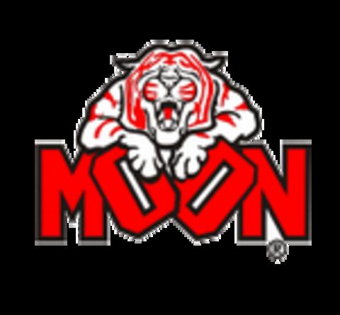 Moon High School mascot