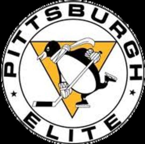 Pittsburgh Penguins Elite mascot