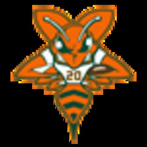 Saginaw Sting mascot