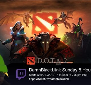 DamnBlackLink Dota 2 - 8 Hour Run 01/13/2019