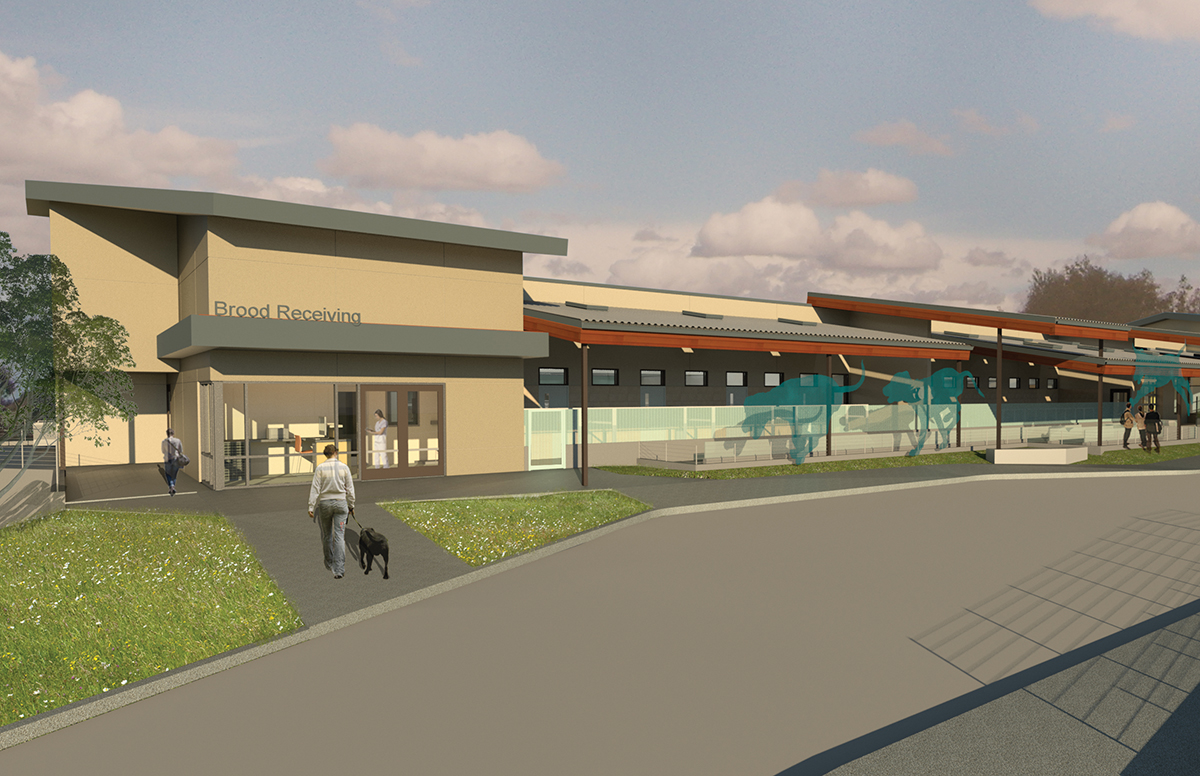 An architect's rendering of the front of the Puppy Center.