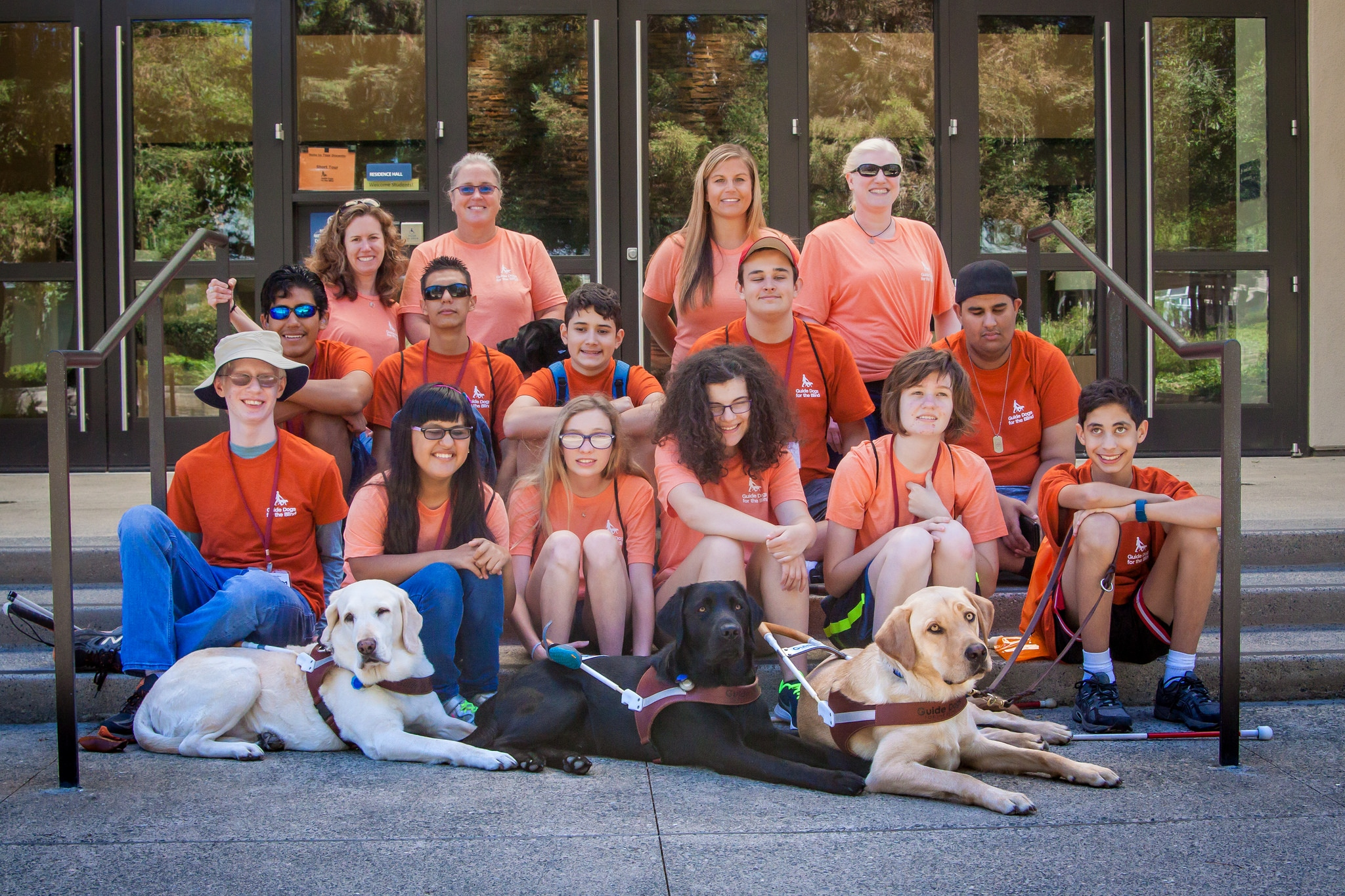 Several GDB campers smile while sitting on the bench with GDB staff and dogs