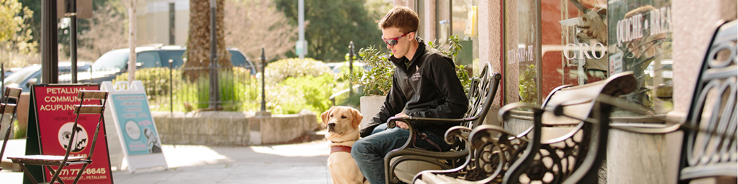 GDB male guide dog instructor sits on a bench while petting his yellow Lab guide dog in training