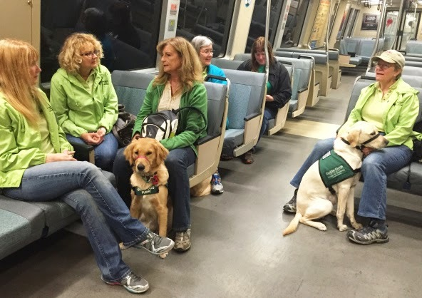 Several GDB puppy raisers ride the tram with their puppies in training to head to a different part of the terminal.