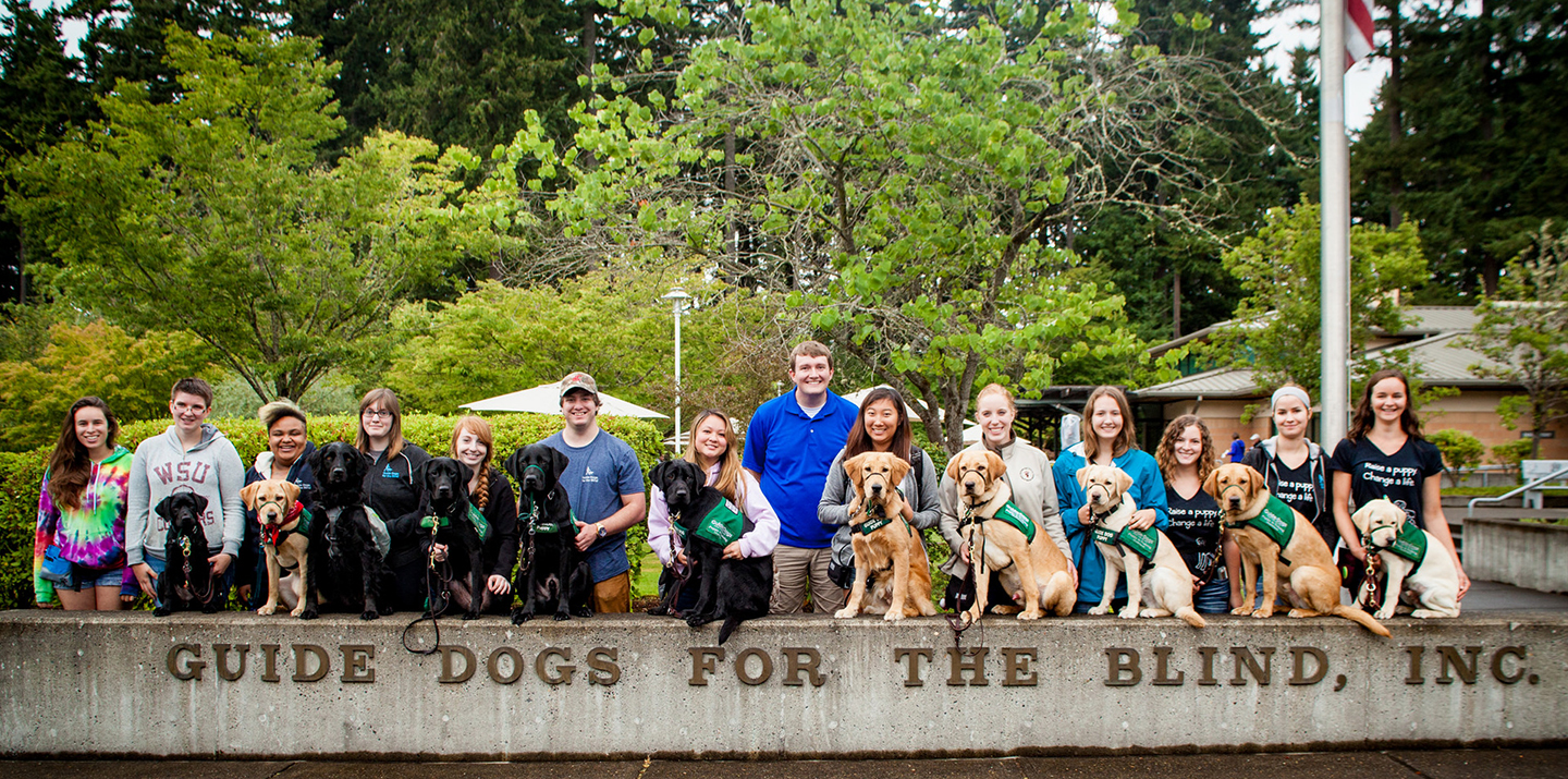 "Fourteen puppy raisers smile while posing with their guide dog puppies in front of the ""Guide Dogs for the Blind"" sign on the Boring, OR campus"