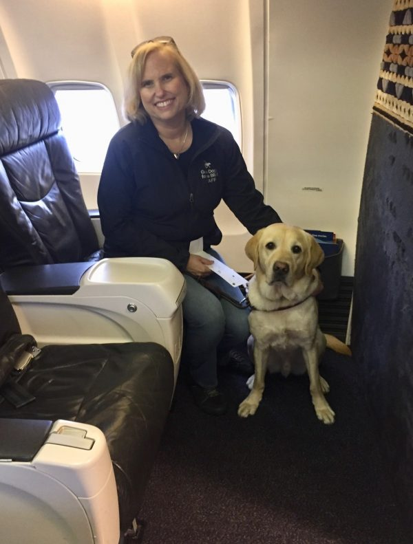 Theresa Stern, Vice President of Outreach, Admissions, and Alumni Services, sits with her yellow Lab guide dog Wills on an airplane.