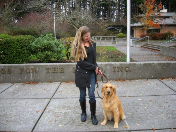 Karyn and Ceili (Golden Retriever) practice sitting