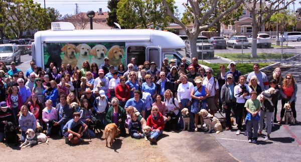 Big group photo of everyone and their puppies/dogs in front of the GDB Puppy Truck
