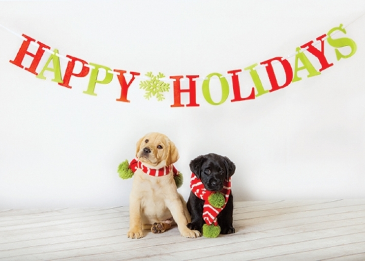 "Two baby Labrador puppies (one yellow, one black) sit front and center beneath a banner that reads ""Happy Holidays."" The pups are wearing red scarves."