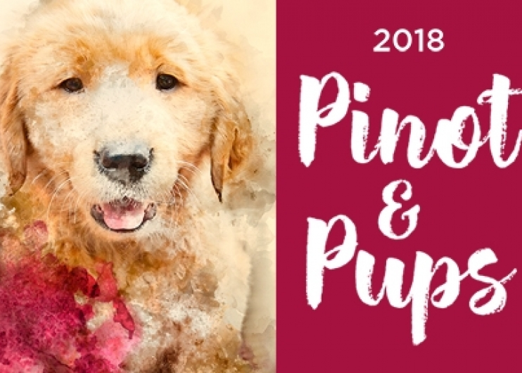 "A watercolor painting of a Golden Retriever puppy, and the words ""2018 Pinot & Pups"" against a wine-colored background."