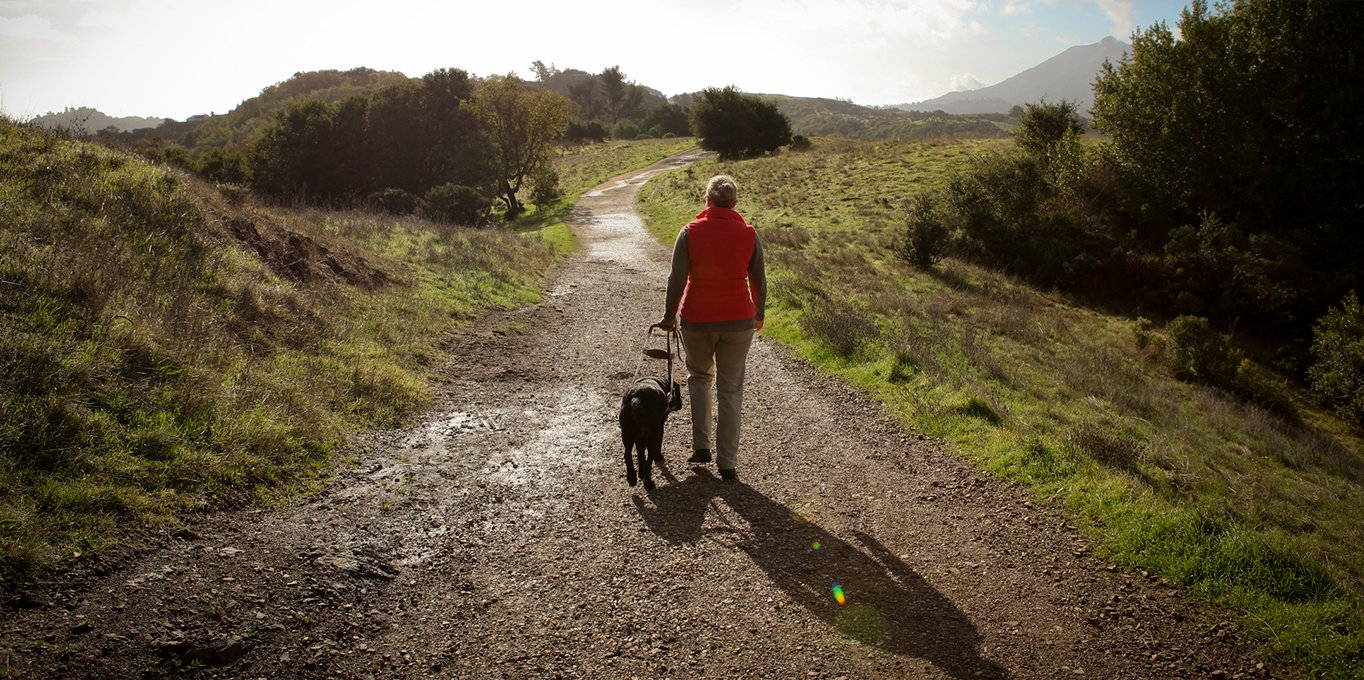 A female GDB graduate hikes along a trail with her black Lab guide dog next to her