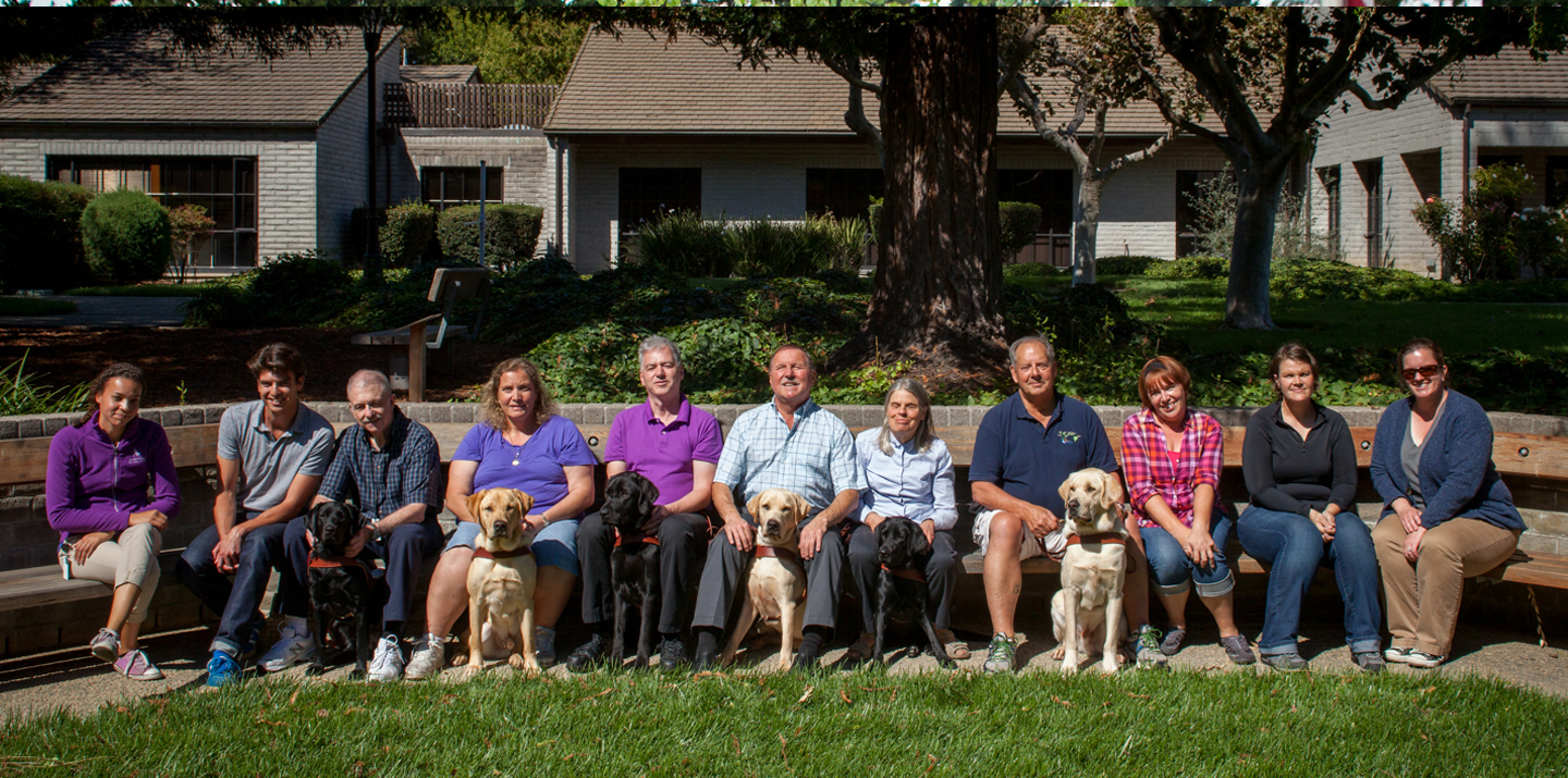 A GDB class of students smile while sitting on the bench with their new guide dogs and instructors