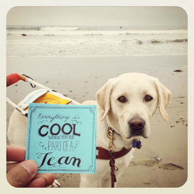 """JR holds up a post it with his unique typography that says """"Everything is cool when you're part of a team"""" with his guide dog Griff and the ocean in the background."""
