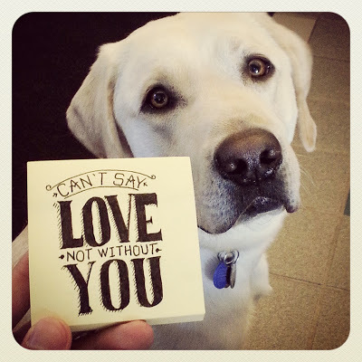"""Sweet photo of Griff looking adoringly at the camera with one of JR's post-its that reads """"Can't say love, not without you."""""""