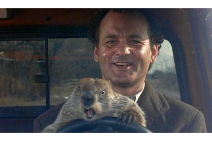 Bill Murray and a Groundhog inside a truck
