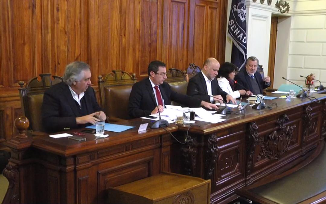 Ley de Protección de Glaciares: 4ª intervención en Comisión de Minería y Energía