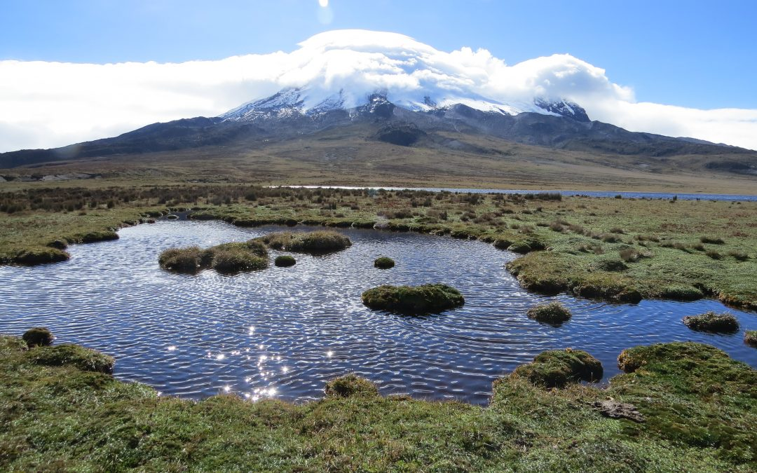 Ecuador has lost more than half of its glacier coverage
