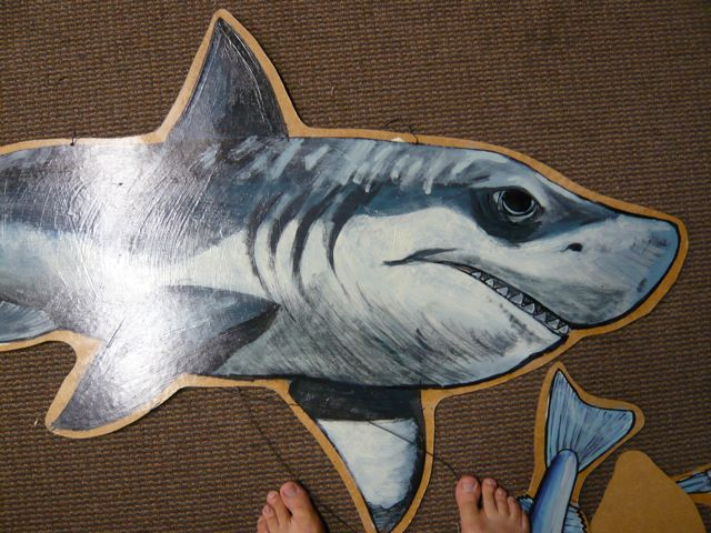 Gnomie has seen a Great White up close, and what an amazing animal it is- It brought Gnomie back to what is must of been like in the time of Dinosaurs seeing such a mighty creature!