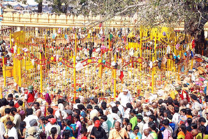 Sammakka Saralamma Jatara