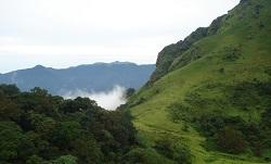 coorg-landscape-tiny
