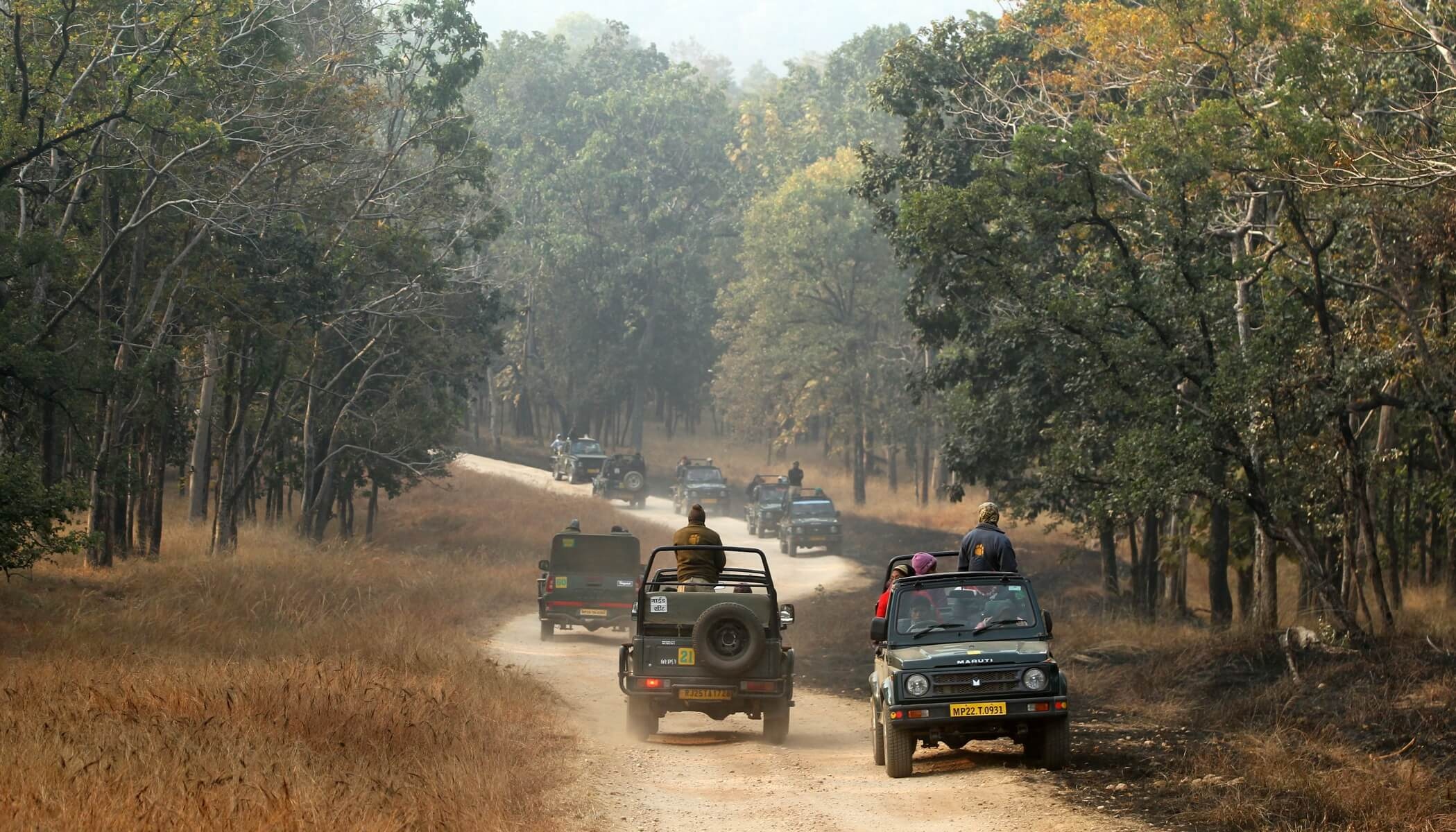 Places to see in Pench