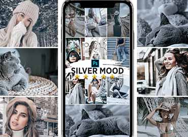Silver Mood Photoshop Actions