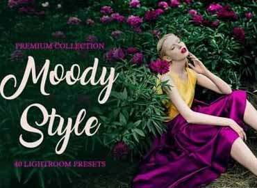 Moody Style Presets for Lightroom