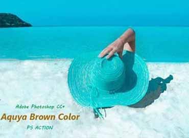 Aqua Brown Color Effect Ps Action