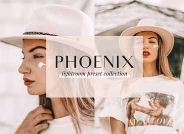 Phoenix Lightroom Presets
