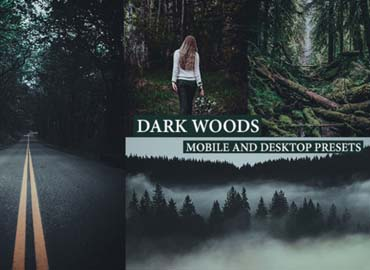 Cinematic Dark Woods Lightroom Presets