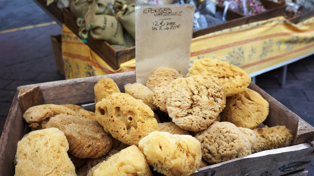 sea sponges tampon alternatives
