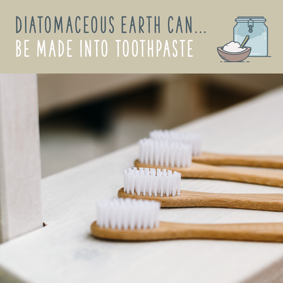 diatomaceous toothpaste